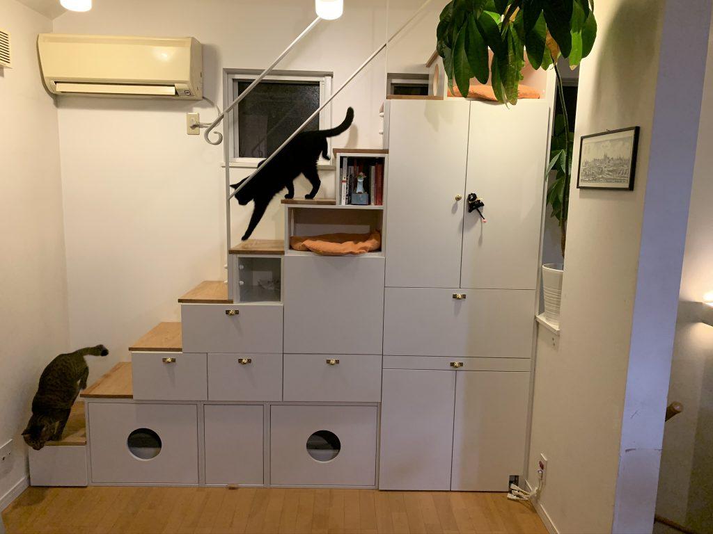 ネコが喜ぶロフト階段